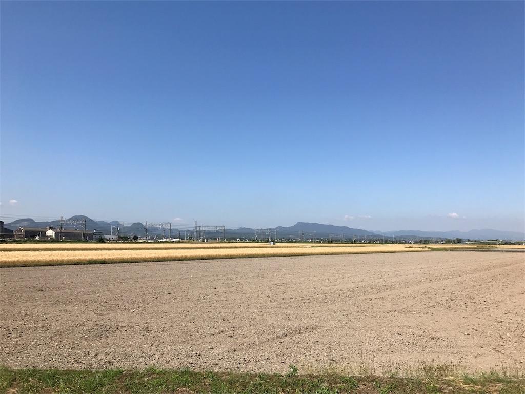 f:id:syuusakukakizoe:20170527092339j:image