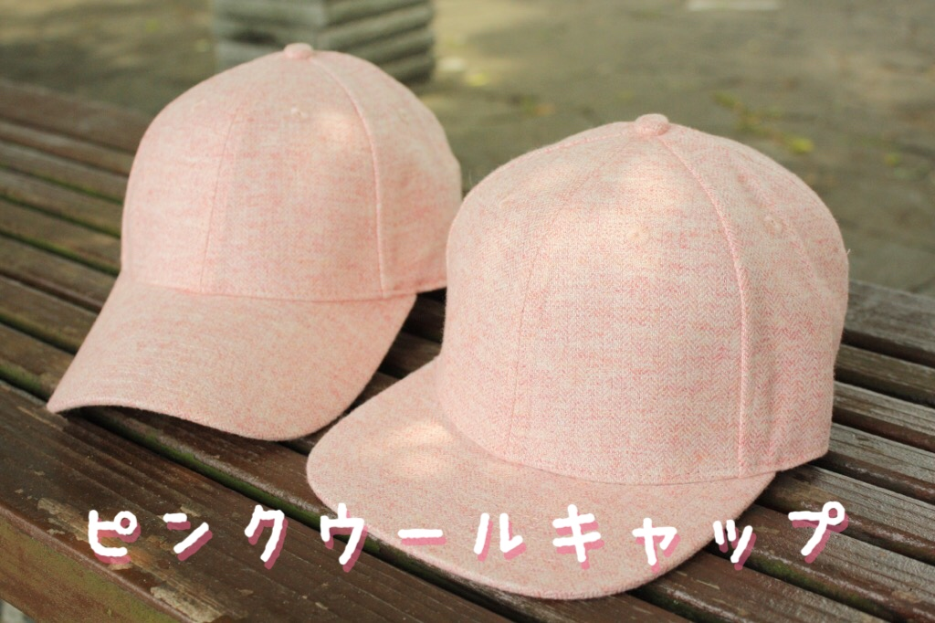 f:id:syuusakukakizoe:20170812160041j:plain