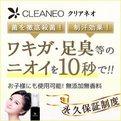 f:id:syuusakukakizoe:20171105113633j:plain
