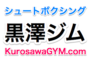 f:id:syuusakukakizoe:20180426080454p:plain