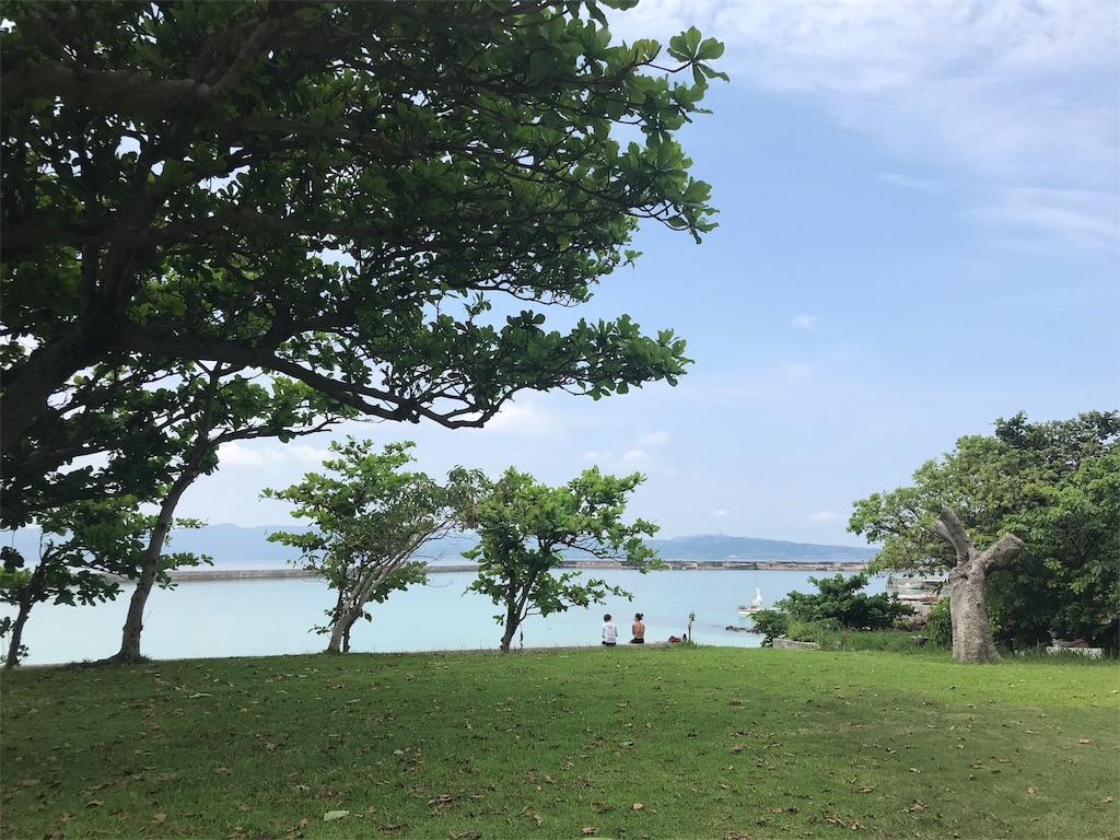 f:id:syuwakoushi:20180802214940j:image