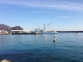 [焼津市][富士山]焼津漁港付近から見た富士山