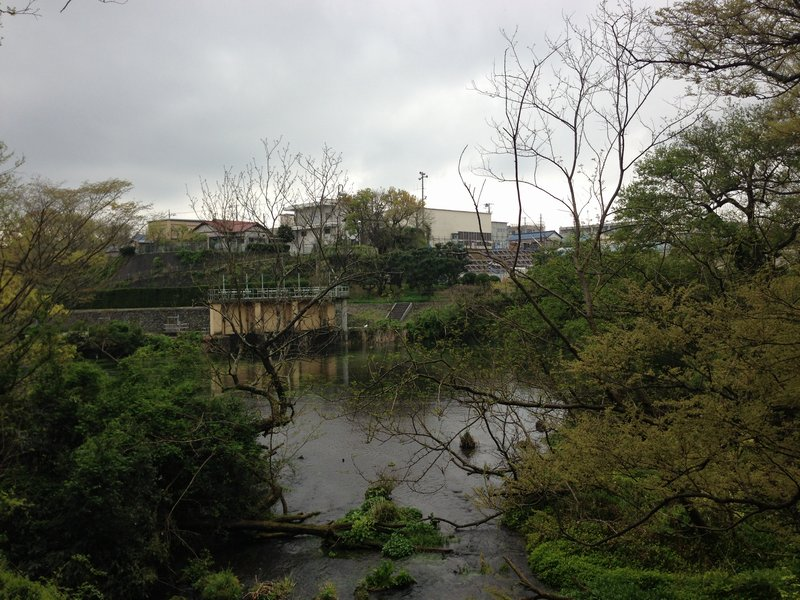 柿田川公園第2展望台から望む