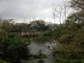 [清水町][柿田川公園]柿田川公園第2展望台から望む