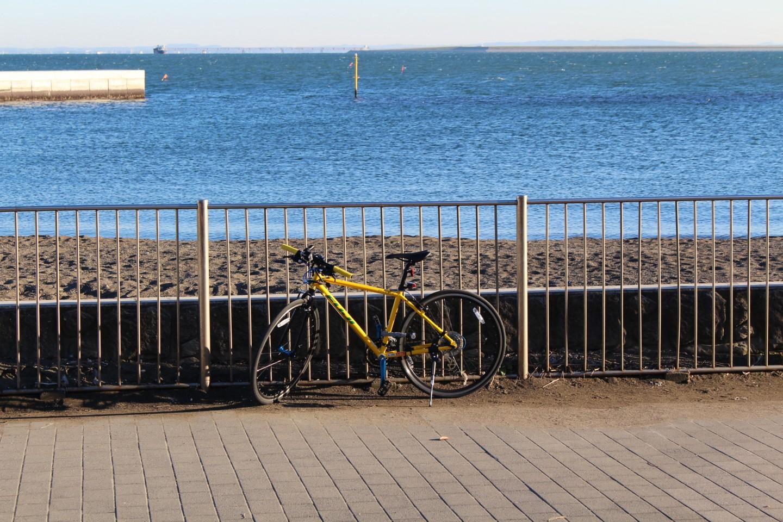 都立城南島海浜公園でフジ パレットの写真