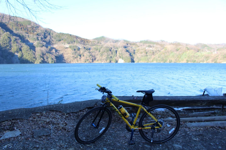 津久井湖でフジ パレットの写真