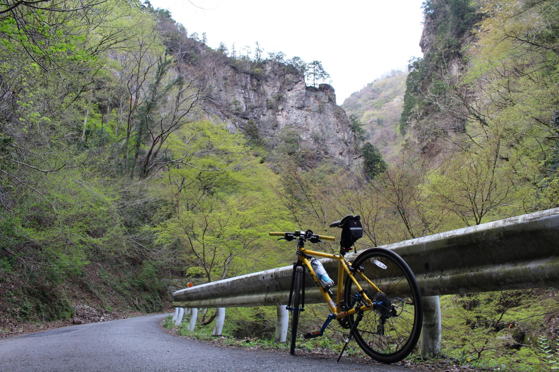 神戸岩でフジ パレットの写真