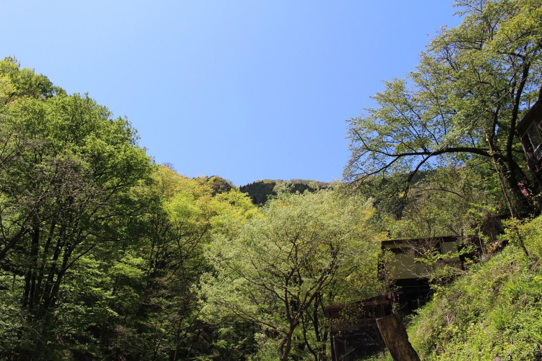 水根沢キャンプ場の写真