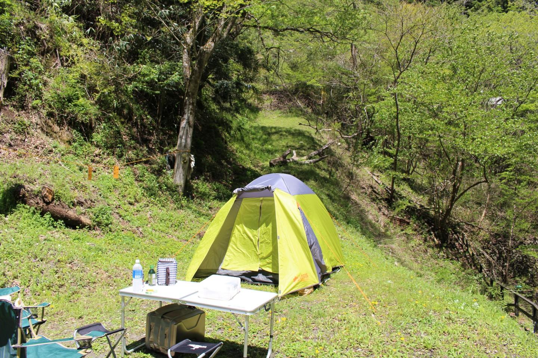 水根沢キャンプ場で設営したテントの写真