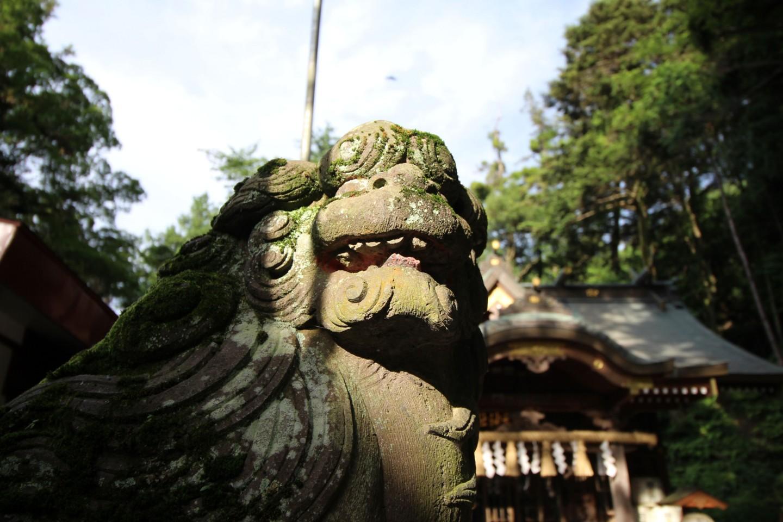 稲城市矢野口 穴澤天神社の写真4