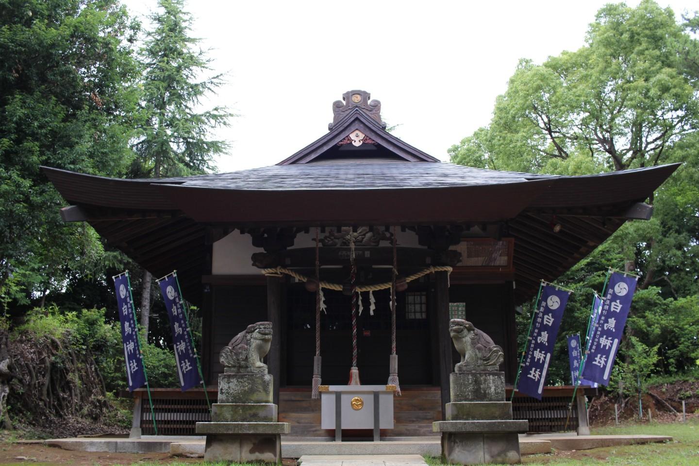 川崎市麻生区白鳥 白鳥神社の写真1