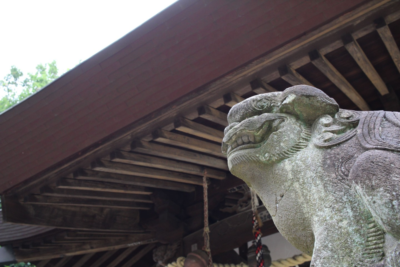 川崎市麻生区白鳥 白鳥神社の写真2