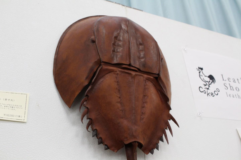 古代生物の革製品ブースのカブトガニの写真