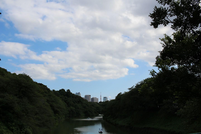 千代田区 千鳥ヶ淵の写真3