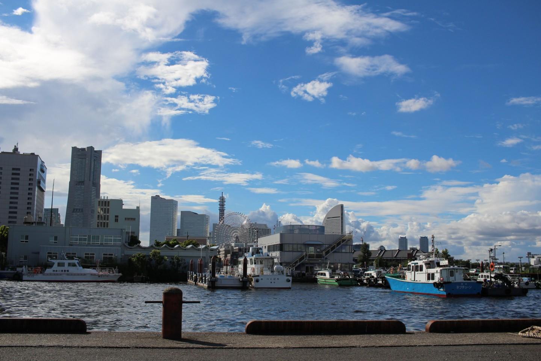 横浜 山下公園からみなとみらいの写真