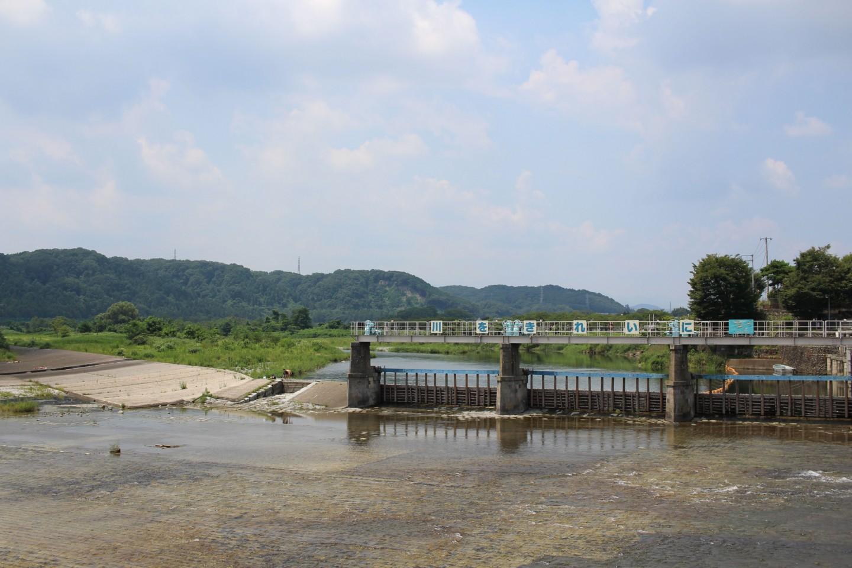 羽村市 夏の羽村堰の写真1