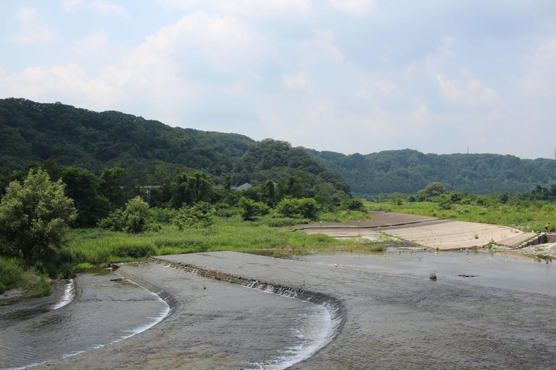 羽村市 夏の羽村堰の写真2