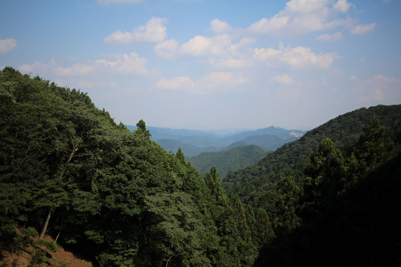 正丸峠の風景写真