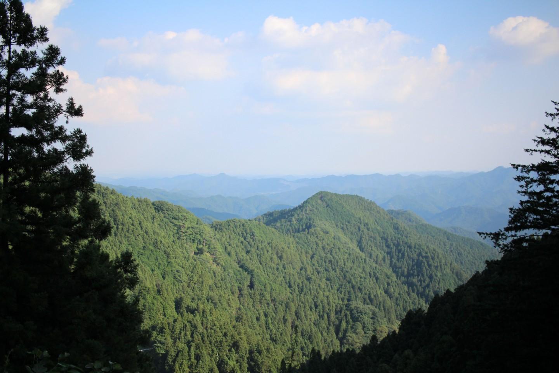 林道刈場坂線の風景写真