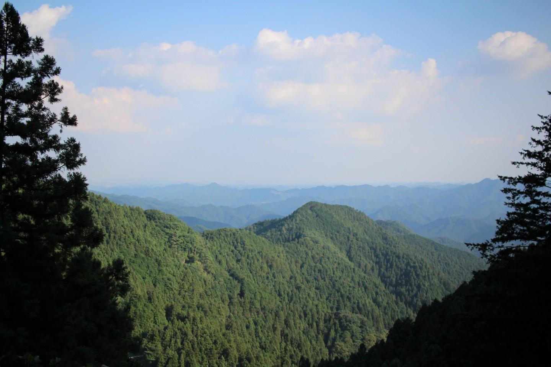 飯能市 林道刈場坂線の景色の写真1