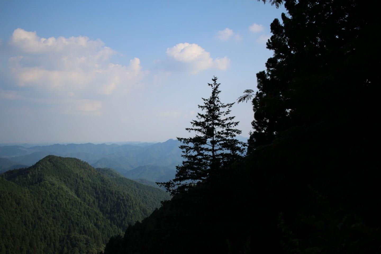 飯能市 林道刈場坂線の景色2