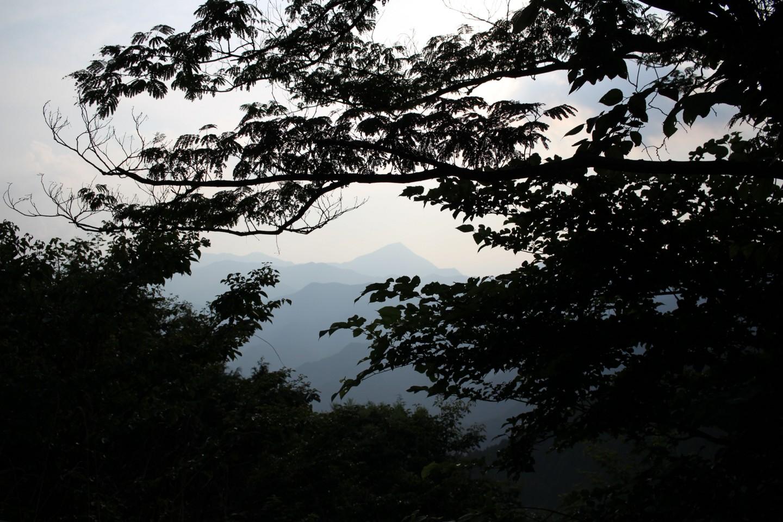 飯能市・ときがわ町 奥武蔵グリーンラインの景色の写真2