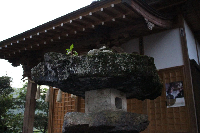 飯能市長沢 借宿神社の写真3