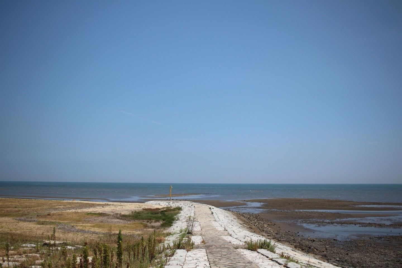 浜の宮海岸の写真