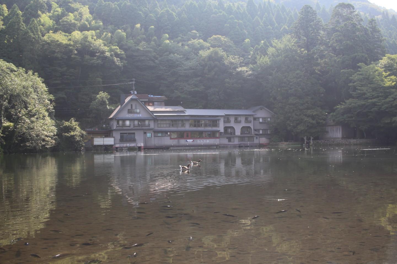 金鱗湖の写真1