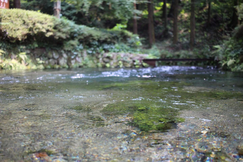 白川水源の写真3