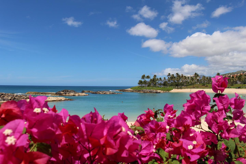 コオリナビーチの写真