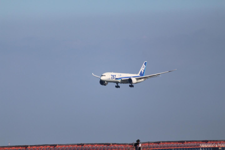 羽田空港に着陸するANA ボーイング787の写真