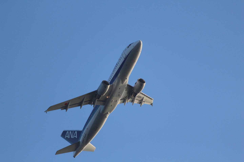 羽田空港からと離陸するANAの飛行機の写真