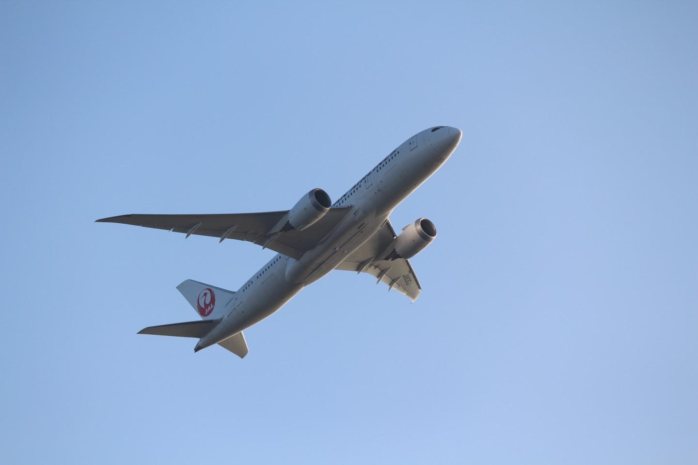 城南島海浜公園から見えるJALの飛行機の写真