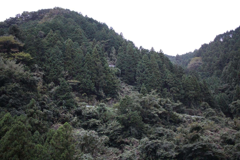 入山峠の景色の写真