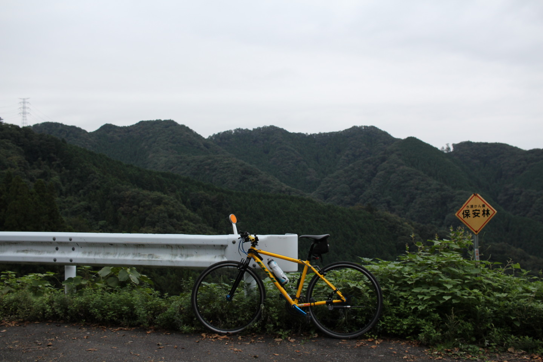 入山峠にてフジ パレットの写真