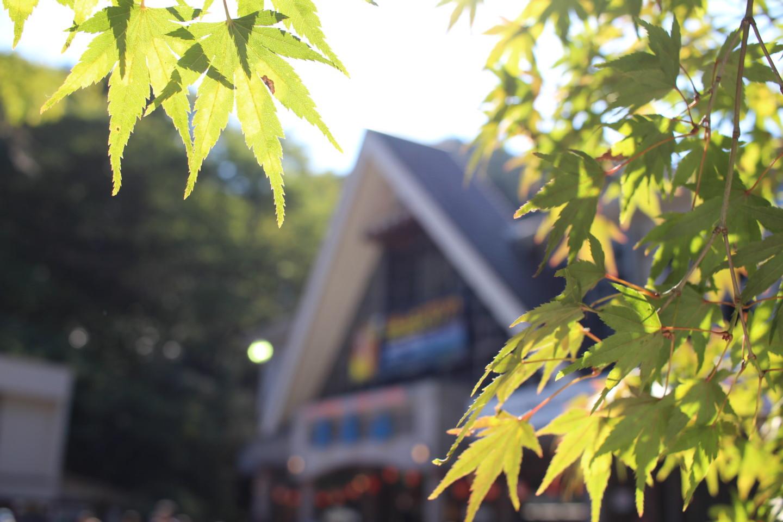 高尾山のケーブルカー乗り場の写真