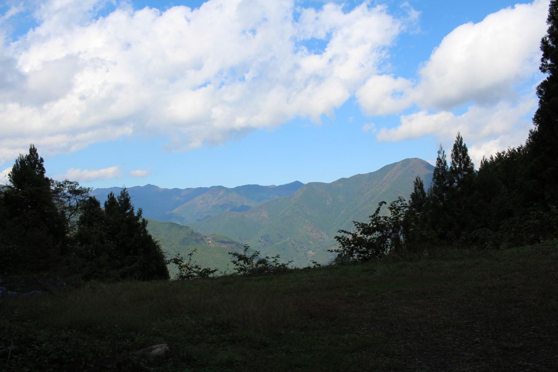 大ダワ峠・鋸山林道の写真4