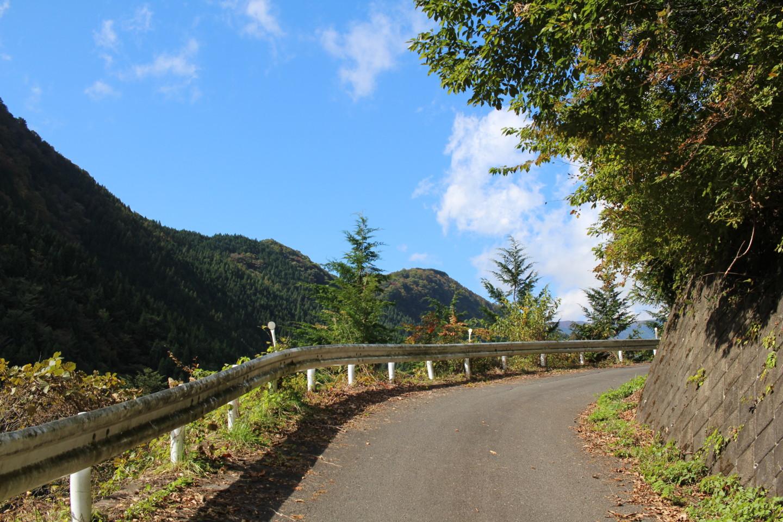 大ダワ峠・鋸山林道の写真5