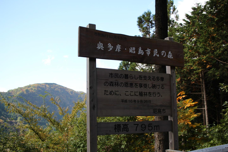 大ダワ峠・鋸山林道の写真6