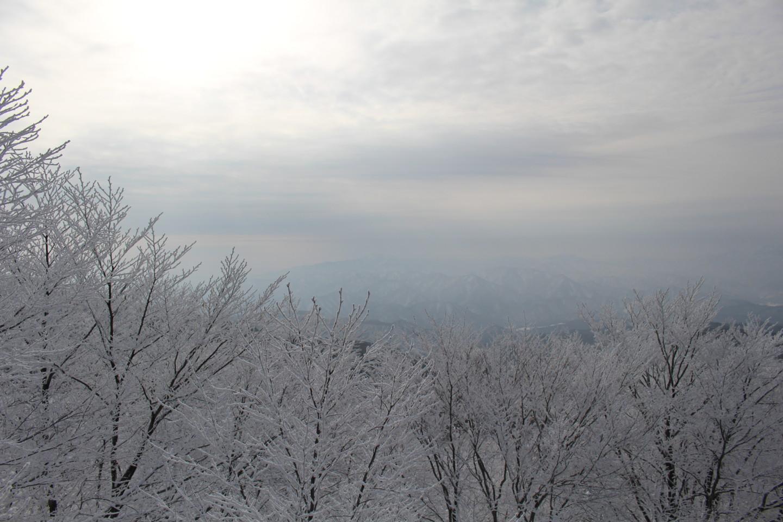 森吉山阿仁スキー場の霧氷の写真1