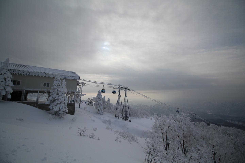 森吉山阿仁スキー場の霧氷の写真6