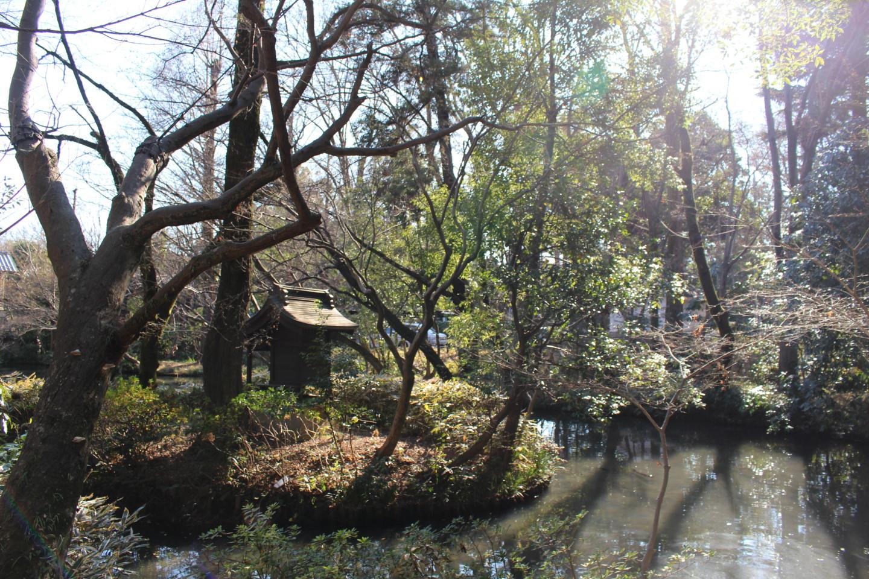 調布市 深大寺の風景写真