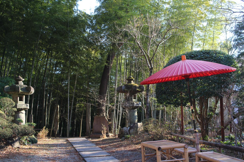 飯能市 竹寺の写真2