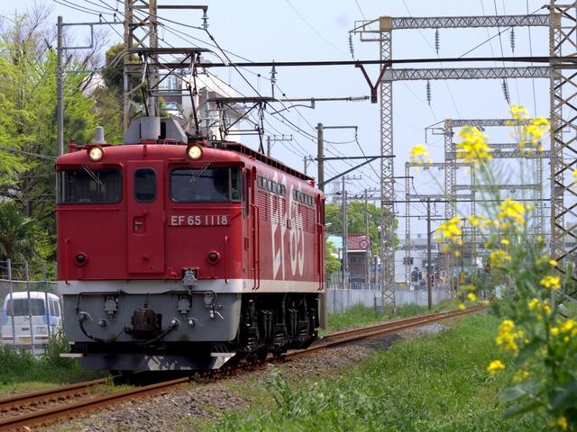 IMGP1865-001