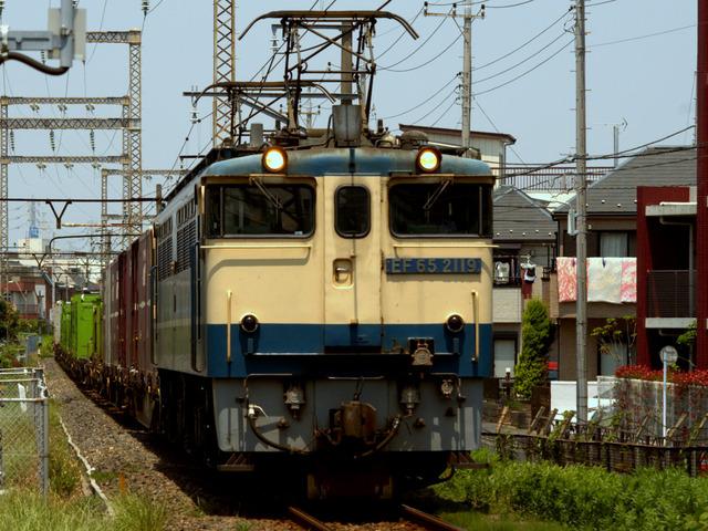 1-IMGP3367