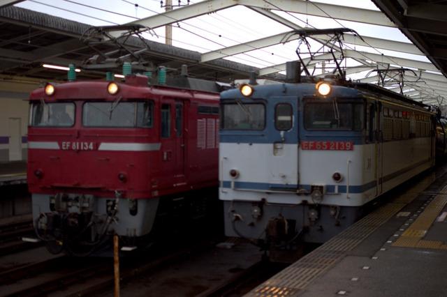 IMGP1431