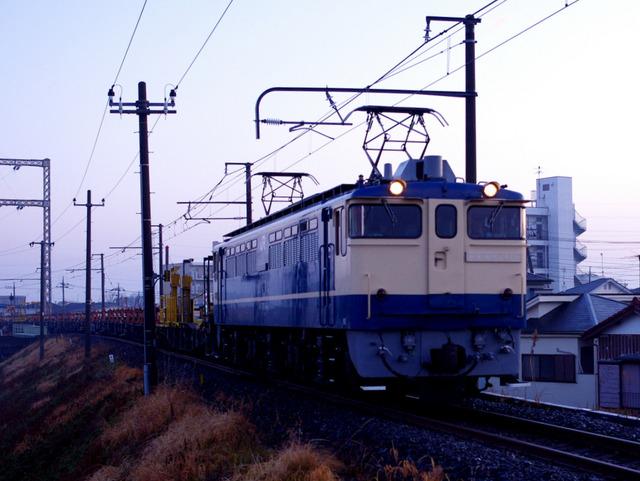 IMGP3237