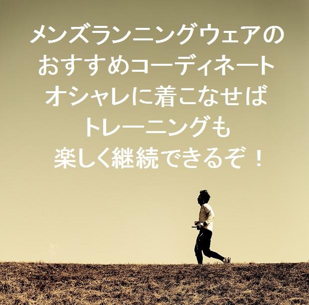 f:id:t-konishi4976:20170128120615j:plain