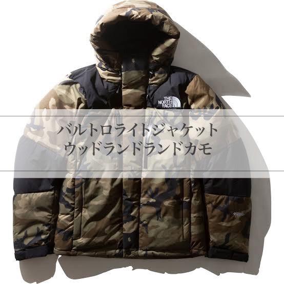 f:id:t-naito-tnf:20201203155108j:plain